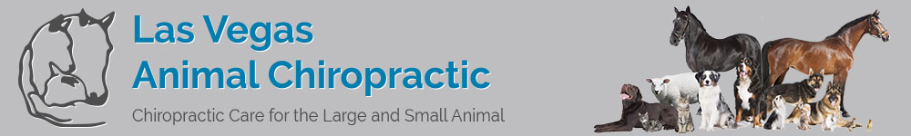 Las Vegas Animal Chiro Logo